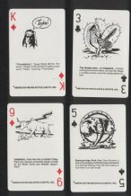 Collectible playing cards. TEXAS by American Indian Arts & Crafts.